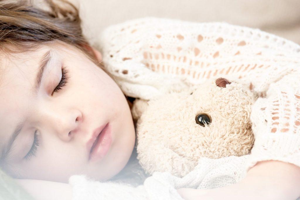 1- Os animais adormecidos